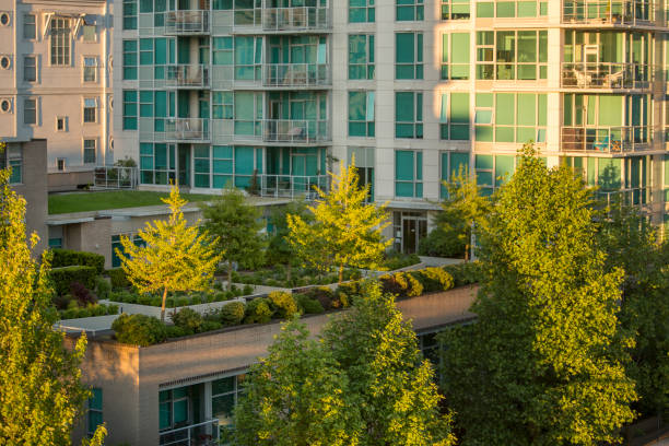 Grands immeubles avec rooftops verdoyants