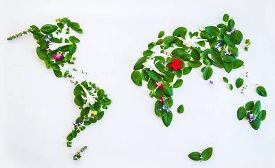 Carte du monde réalisée à partir de feuilles vertes et de fleurs
