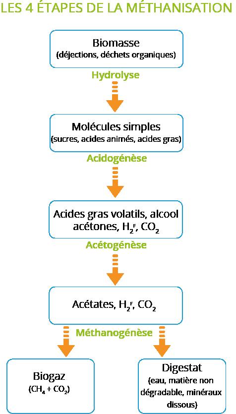 Schéma explication étapes méthanisation