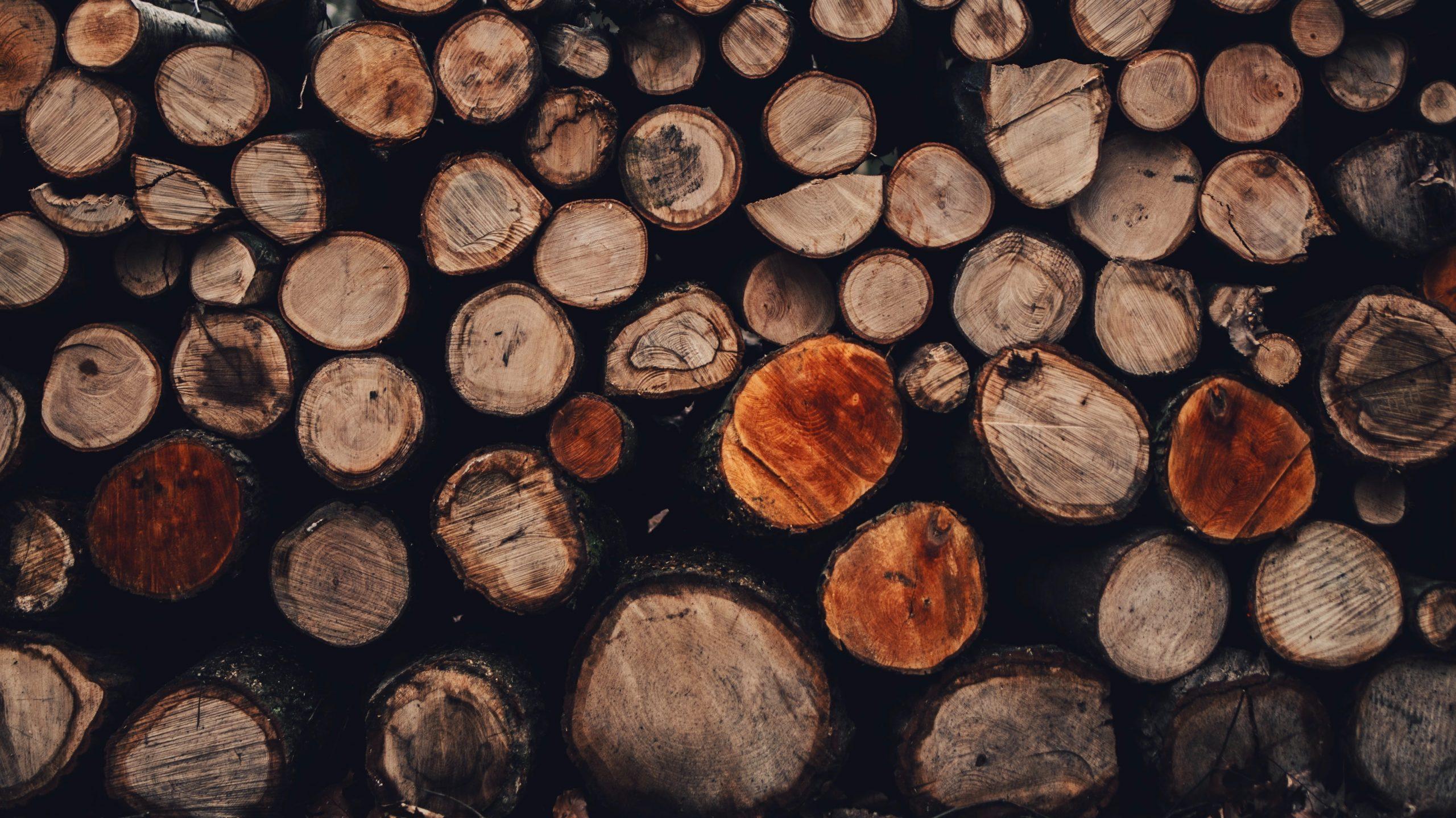Un stere de bois